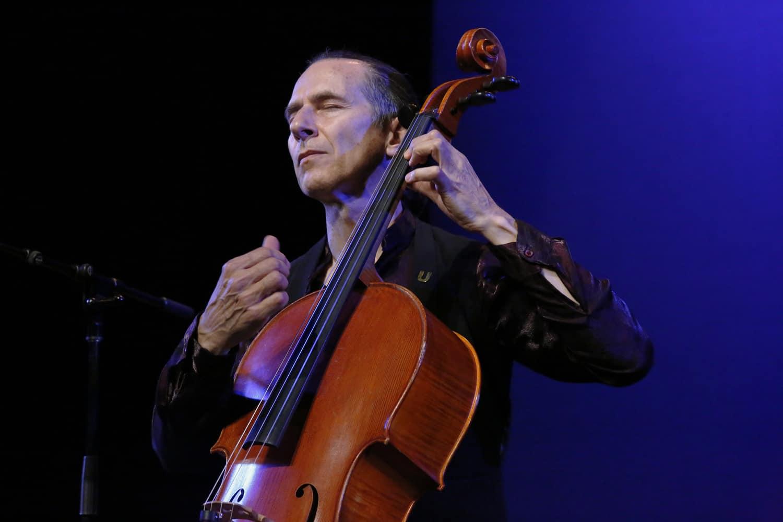 Stephen Katz performance